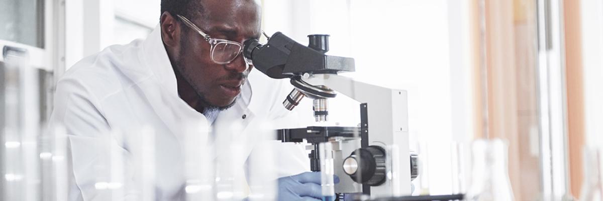 doctor examining result