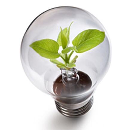 Duurzaamheid voor een gezonde planeet